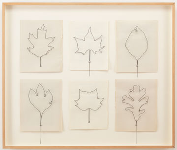 Eric Rhein, Fly Leaves, wire and paper.