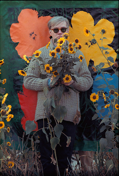 Warhol Flowers IV, photographed by William John Kennedy, now on display through March 8 at Metroquadro Miami, Wynwood.